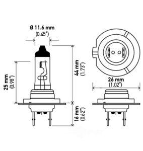 Cornering Light-Headlight Bulb Hella H7