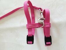 Ferret Harness & Leash Pink *New*