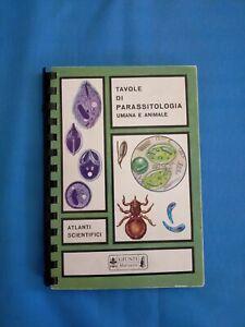 Tavole Di Parassitologia Umana E Animale Atlanti Scientifici Giunti Marzocco s15