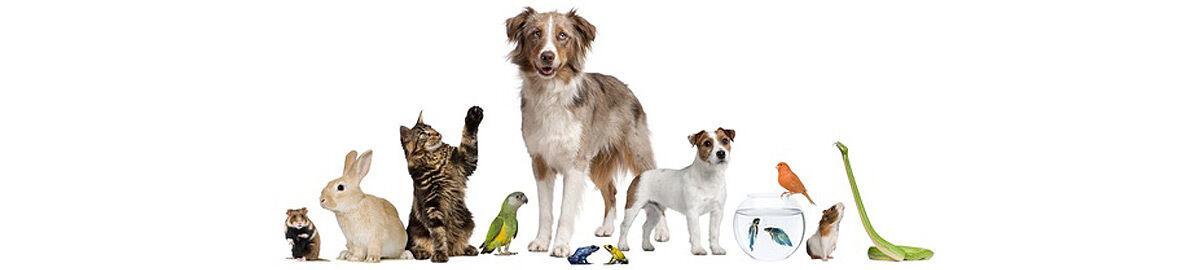 Breker Hobby-Tierbedarf