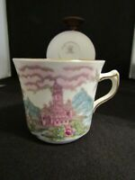 Antique Tea Cup and Saucer JHC and Co Wellington China Italian Scenery