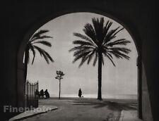1927 Vintage FRANCE Nice Coast Palm Rivierara Architecture Photo Art ~ HURLIMANN