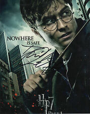 HARRY POTTER personally signed 10x8 - DANIEL RADCLIFFE as Harry