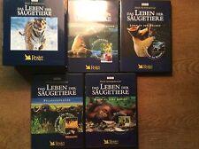 Das Leben der Säugetiere [ 4 DVD Box ] BBC David Attenborough TIGER