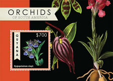 Guyana - 2012 - Orchids Of South America - Souvenir Sheet - MNH