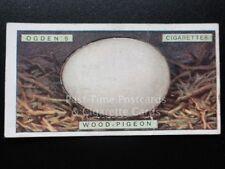 Single: No.28 WOOD PIGEON - BIRD'S EGGS (Cut-Out) - Ogden's 1923