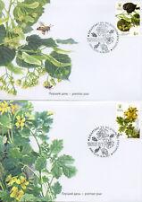 Ukraine 2017 FDC Medicinal Plants 4v Set on 4 Covers Flowers Nature Stamps