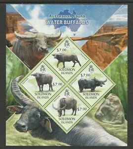 SOLOMON ISLANDS 2013 Australian Animals WATER BUFFALOS Souvenir Sheet Set 4v MNH