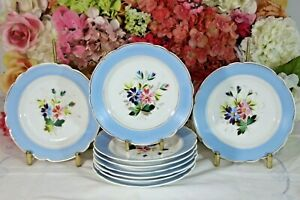 Limoges, Hand Painted Dessert Plates with Sky blue Rim (9)