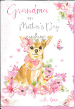 GRANDMA ON MOTHERS DAY CARD**CUTE CHIHUAHUA CHIWAWA DOG*1ST CLASS POST(L1)