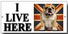 """ENGLISH BULL DOG """"IO VIVO QUI"""" METAL SIGN, Qualità Premium sign.dog cartello di avvertimento."""