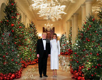 PRESIDENT DONALD TRUMP & MELANIA 2018 CHRISTMAS PORTRAIT - 8X10 PHOTO (RT406)