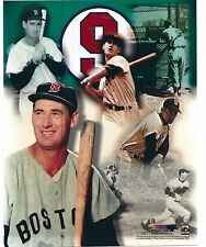 "Ted Williams - Boston Red Sox - Legend  Composite  8"" x 10"" Photo"