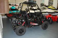 Quadzilla Wolf Junior off-road buggy