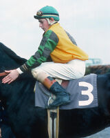 Triple Crown Jockey STEVE CAUTHEN Glossy 8x10 Photo Print Horse Racing Poster
