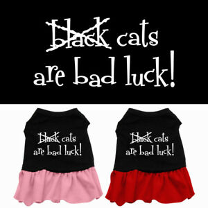 Black Cats are Bad Luck Screen Pet Clothing Apparel Halloween