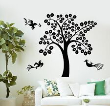 Wall Decal Tree Beautiful Birds Home Art Decor Vinyl Stickers (ig2811)