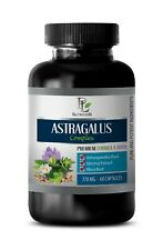 brain model - ASTRAGALUS COMPLEX - panax ginseng korean 1B