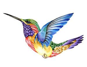 Beautiful Hummingbird watercolour Painting Wall art Canvas Home Decor Print
