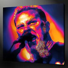 JAMES HETFIELD METALLICA MUSIC IMMAGINE FOTO STAMPA SU TELA 30.5cmx30.5cm