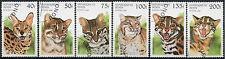 Cats Postage Pet & Farm Animal Postal Stamps