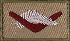 Iraq- TAJI 3 7RAR Operational Colour Patch Militaria Patch Sleeve / Shoulder