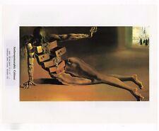 "SALVADOR DALI  Print Book Plate 9x12--""Anthropomorphic Cabinet"" 1936"