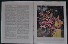 1940 CARACAS VENEZUELA magazine article, natives, history, color photos, pre-WWI