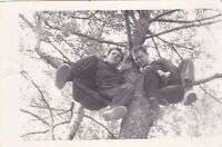 1960s Handsome men couple sitting on tree guys ass Soviet Russian photo gay int