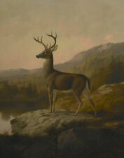 """stunning 24x36 oil painting handpainted on canvas """"A  lovely deer""""N5179"""