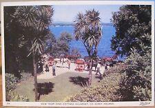 Irish Postcard View from DINIS COTTAGE Island Palms KILLARNEY Ireland Dollard