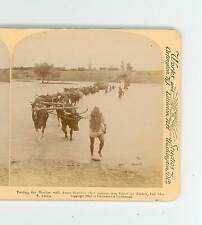 B1325 Boer War Fording The Modder With Army Supplies South Africa D