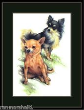 English Print Chihuahua Puppy Dog Puppies Dogs Vintage Poster Art Picture
