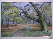 FOREST LANDSCAPE A.RICKATOON ENGLISH SCHOOL 1893 W/COL
