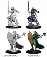 WZK73706 Dungeons & Dragons Nolzur`s Unpainted Miniatures W9 Female Elf Paladin