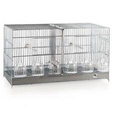 Cage de Elevage de 60 pour Oiseaux RSL avec séparateur Canaries,Chardonnerets