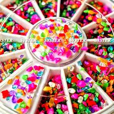 12 Mixed Colors Nail Art Acrylic Powder Particle Crushed Shell+Wheel #SB-006