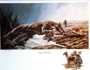 """Prints - Lurcher  """"One Man and His Dog"""" by the late Vic Granger (NOT SIGNED)"""