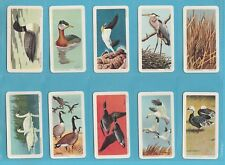 BIRDS - BROOKE BOND CANADA - SCARCE SET OF 48 BIRDS OF NORTH AMERICA  -  1962