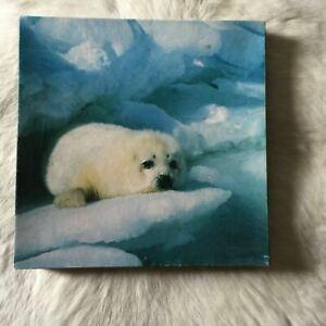 Springbok SEAL VINTAGE Jigsaw Puzzle Over 500 Pieces Icebergs SNOW Ice WINTER