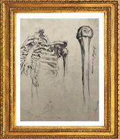 ANCIEN DESSIN CABINET DE CURIOSITES ETUDE DE SQUELETTE HOMME ANATOMIE (2)