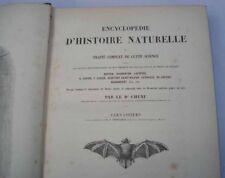 Chenu Encyclopedie Histoire Naturelle Les Carnassiers