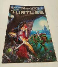 Teenage mutant ninja turtles # 13 , 1988
