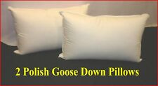2 KING SIZE PILLOWS - 95% POLISH GOOSE DOWN - FIRM - AUSTRALIAN MADE