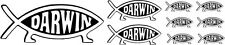 CHARLES DARWIN FISH STICKER PACK - VINYL STICKERS - Various Sizes
