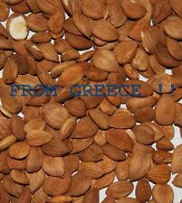 Raw Apricot bitter Kernels Seeds , No chemicals 180gr  6,35 Oz aprox 400 kernels