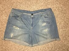 Lane Bryant Jean Shorts Denim Plus Size 26 Weekend Womens NWOT