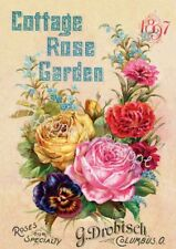 Fabric Block Vintage Label Cottage Rose Garden 1897 Floral Advertisement