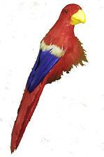 Perroquet rouge bleu et jaune 26.5 cm en plumes [80250099] decoration de salle