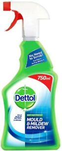 Dettol Mould and Mildew Remover Spray, 750 ml